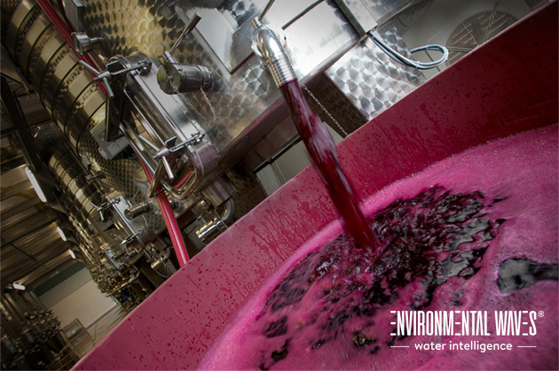 Wine wastewater treatment